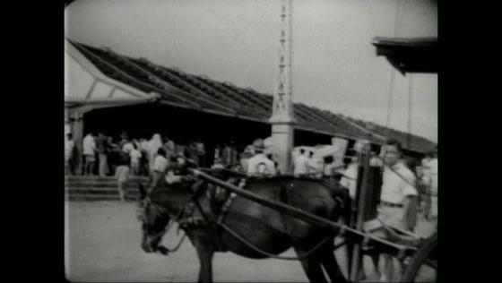 Rijk Verleden - Het Leven in Nederlands-Indië