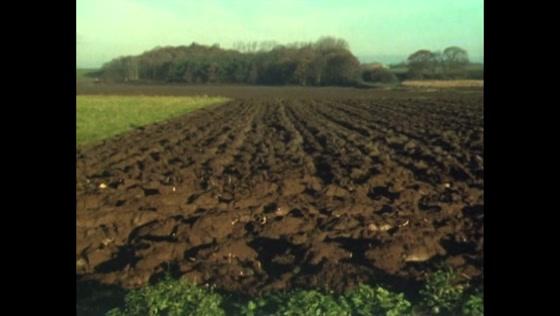 Ontdek je Plekje: Noord-Brabant