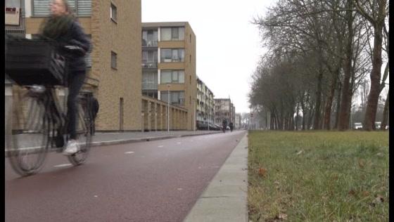 Dick Emmer over Plan van Aanpak Poelenburg en Peldersveld
